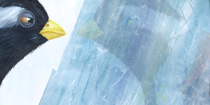 Yuliya Pankratova Little Iceberg 3.4.jpg